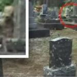 これは何なんだ!?お墓でエイリアンが撮影される?