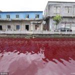 【中国】天変地異の前触れ?まるで魔界の川!一夜にして川が血の色に染まる