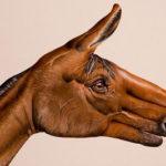 【芸術】これはすごい。手にペイントして動物を表現する
