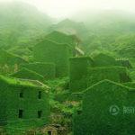 【中国の反応】浙江省のファンタジーのような緑に飲み込まれた廃墟の美しさ
