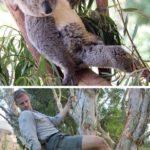 【動物】動物園職員がお気に入りの動物のお気に入りのショットを真似る。in オーストラリア シドニー