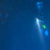 トルコ沖で発見された巨大な球状の膜の正体は空飛ぶイカの卵か!?