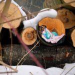 【芸術】ひっそりと人知れずに森の中に描かれる作品 オーストリア ザルツブルグ