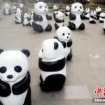 【中国】蘭州市の街中に100頭のパンダが出現する!