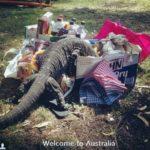 愛すべき国、それはオーストラリア!な写真集