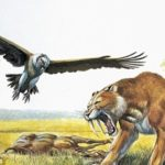 ネアンデルタール人はサーベルタイガーと死闘を繰り広げていた可能性がある