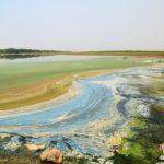 【中国】浙江の杭州湾に油彩画のような浜辺が出現する。