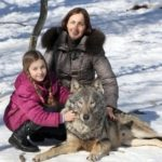 【きょうのわんこ?】ベラルーシで5年間狼達と暮らしている家族
