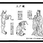 三屍:人体を監視する神かそれとも寄生した人を鬼に変えてしまう恐ろしい寄生虫か?