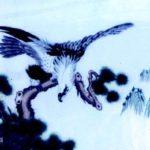 鵬:巨大すぎる鳥だがもともとは魚というカオスな神鳥