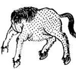 中国神話の奇妙な馬の怪物を集めてみた。怪馬特集2(戎宣王屍、三騅、峳峳、水馬、孰湖)