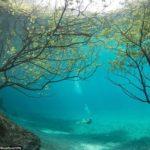 【自然】冷たく透明な雪解け水で水没した公園の幻想的な風景。オーストリアで春にだけ現れる不思議な湖。