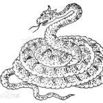 中国神話の奇妙な蛇を集めてみた。蛇の怪物特集その2(長蛇、琴虫、鈎蛇、鳴蛇)
