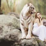 白虎:四象で唯一凶性を持ち邪を屠る勇猛な武神
