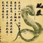 干ばつが起こる前に現れ、食べると病気が治る中国の蛇の怪物、肥遺(フェイイー)