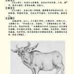 諸懐:中国神話の牛のような豚であり人を食べる怪獣
