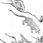 中国神話の奇妙な怪物を集めてみた。怪獣特集2(居暨獣、白豪、犀牛)